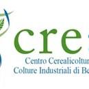 crea_centro_cerealicoltura_e_colture_industriali_di_bergamo_copia